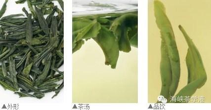 各类茶 - 海峡茶学港